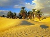 тунис джерба какое море омывает